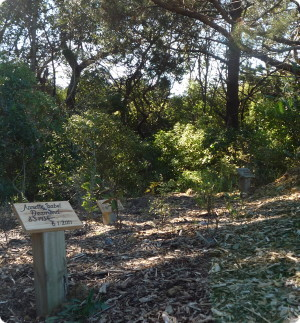 natural burial cemetery