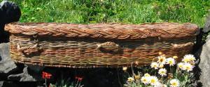 Go Willow coffin